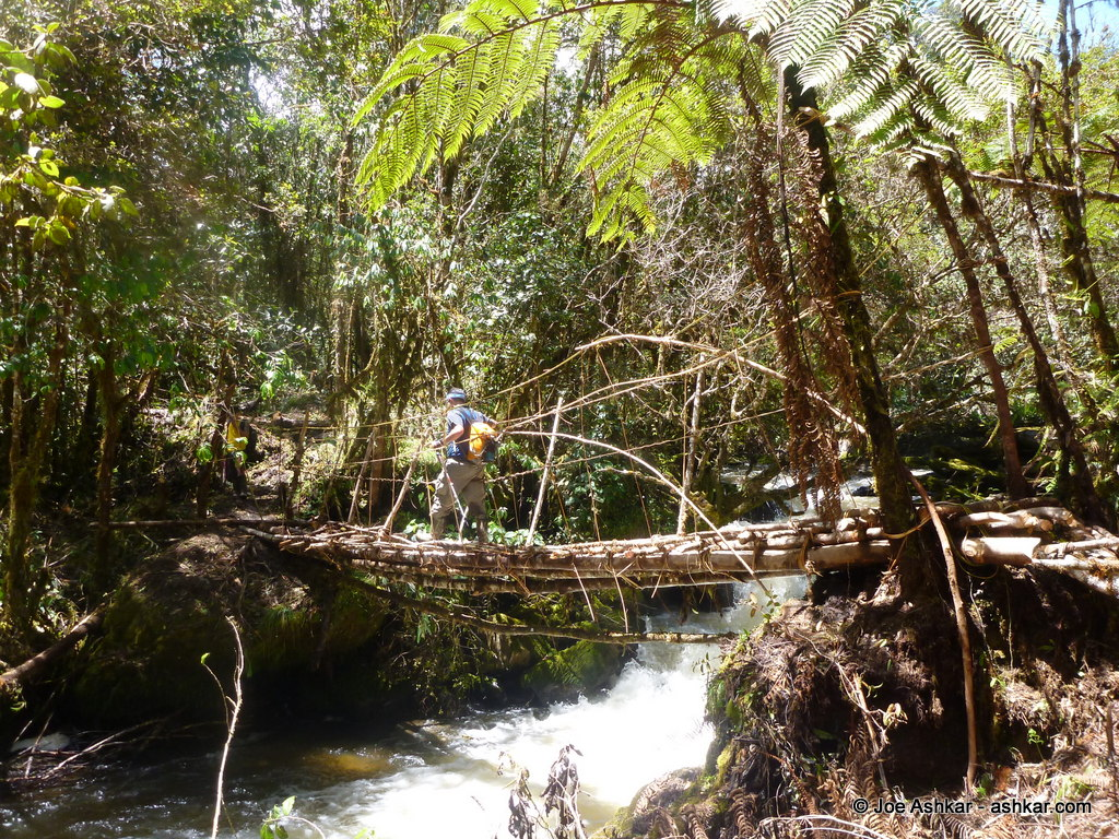 Raging Rivers and slippery bridges in the Papua Jungle.